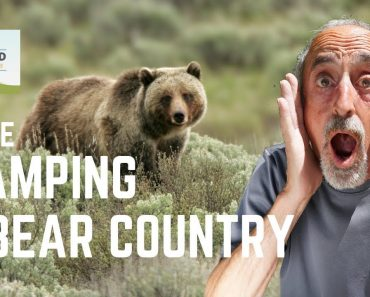 Ep. 113: Safe Camping in Bear Country